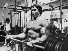 biceps arnold