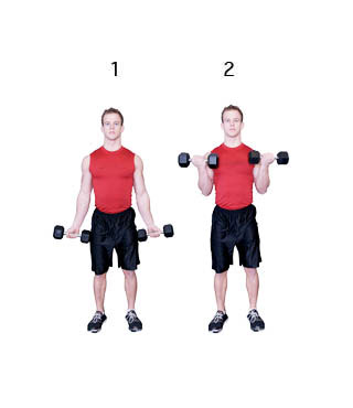 biceps s jednoručkami