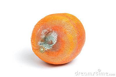 hnile ovocie