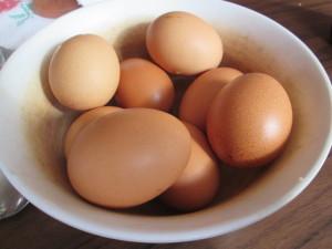 vajcia v miske