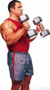 kladivové zdvihy na biceps