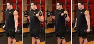 zotmanove bicepsové zdvihy